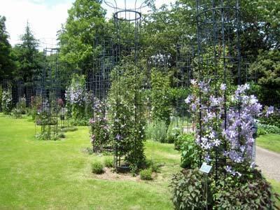 ヴァンジ彫刻庭園美術館07.jpg
