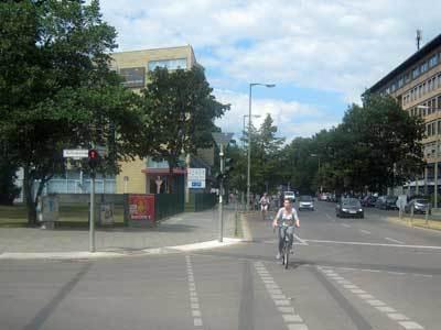 bicycled3.jpg
