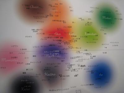 カラーハンティング06.jpg