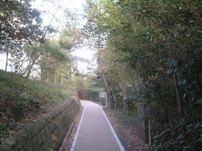 県立近代美術館葉山05.jpg